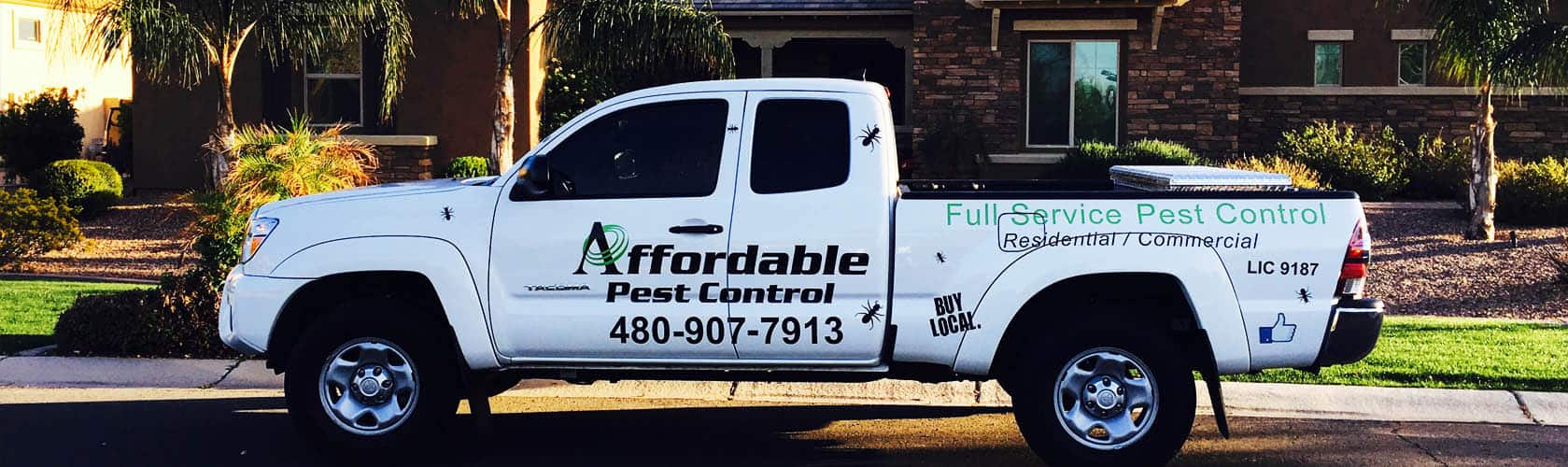High Quality Pest Management Services | Full Service Pest Control | Affordable Pest Control
