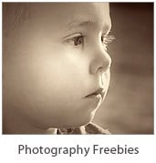 Photography - Free downloads