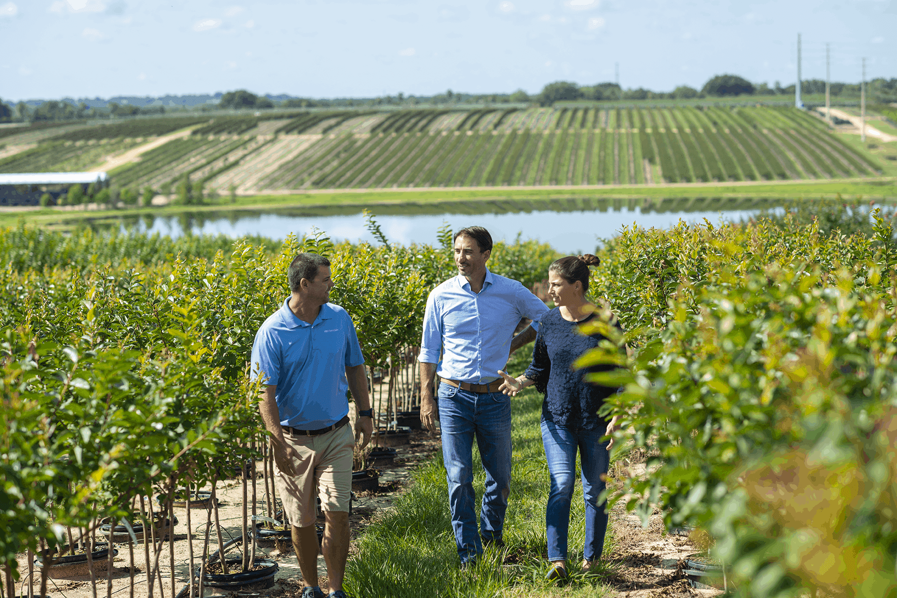 farmraces_cherrylake1