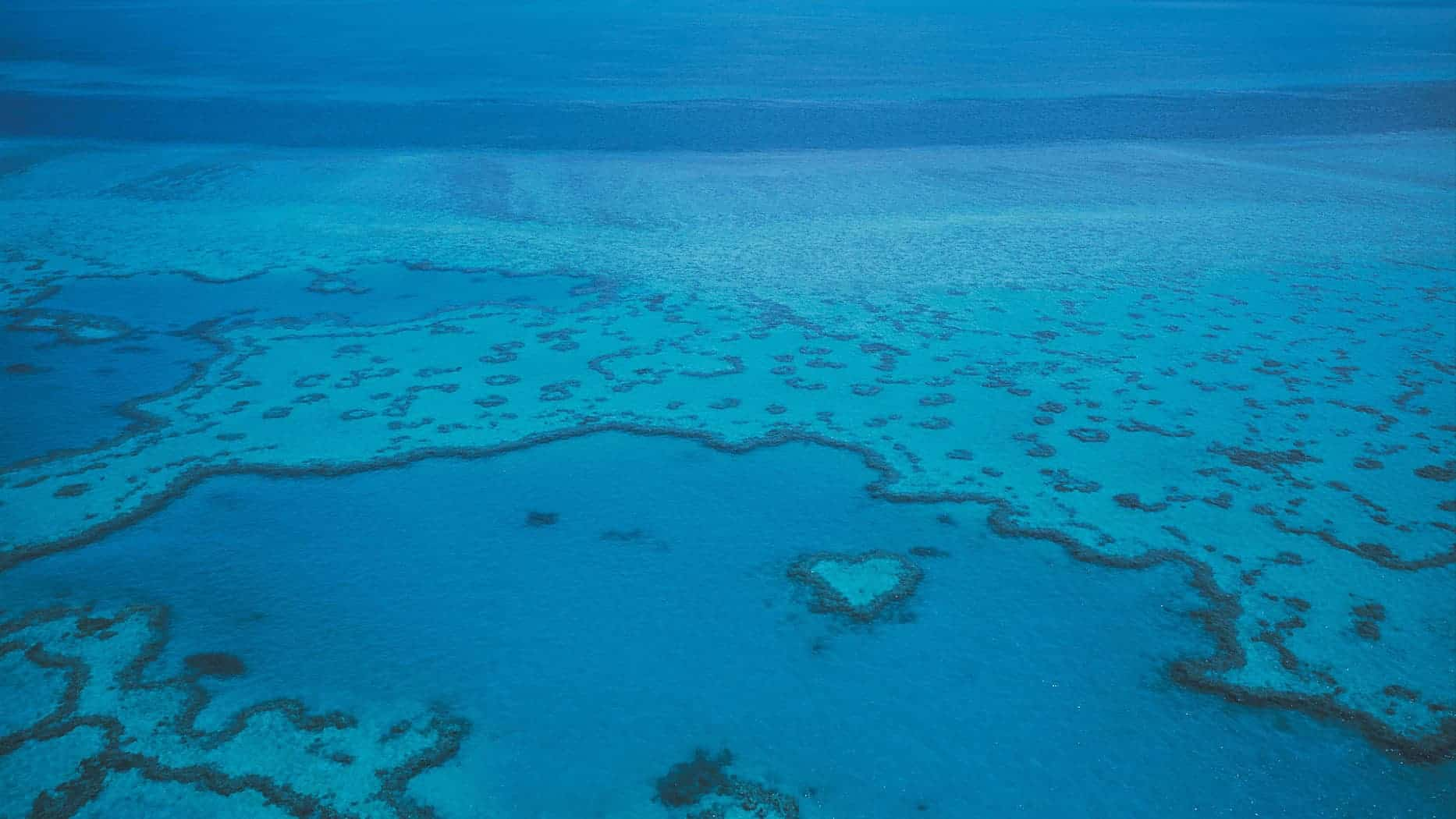 aerial of Heart Reef and the Great Barrier Reef