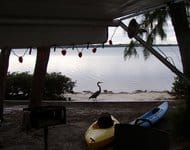 Waterfront campsite at Fort Desoto
