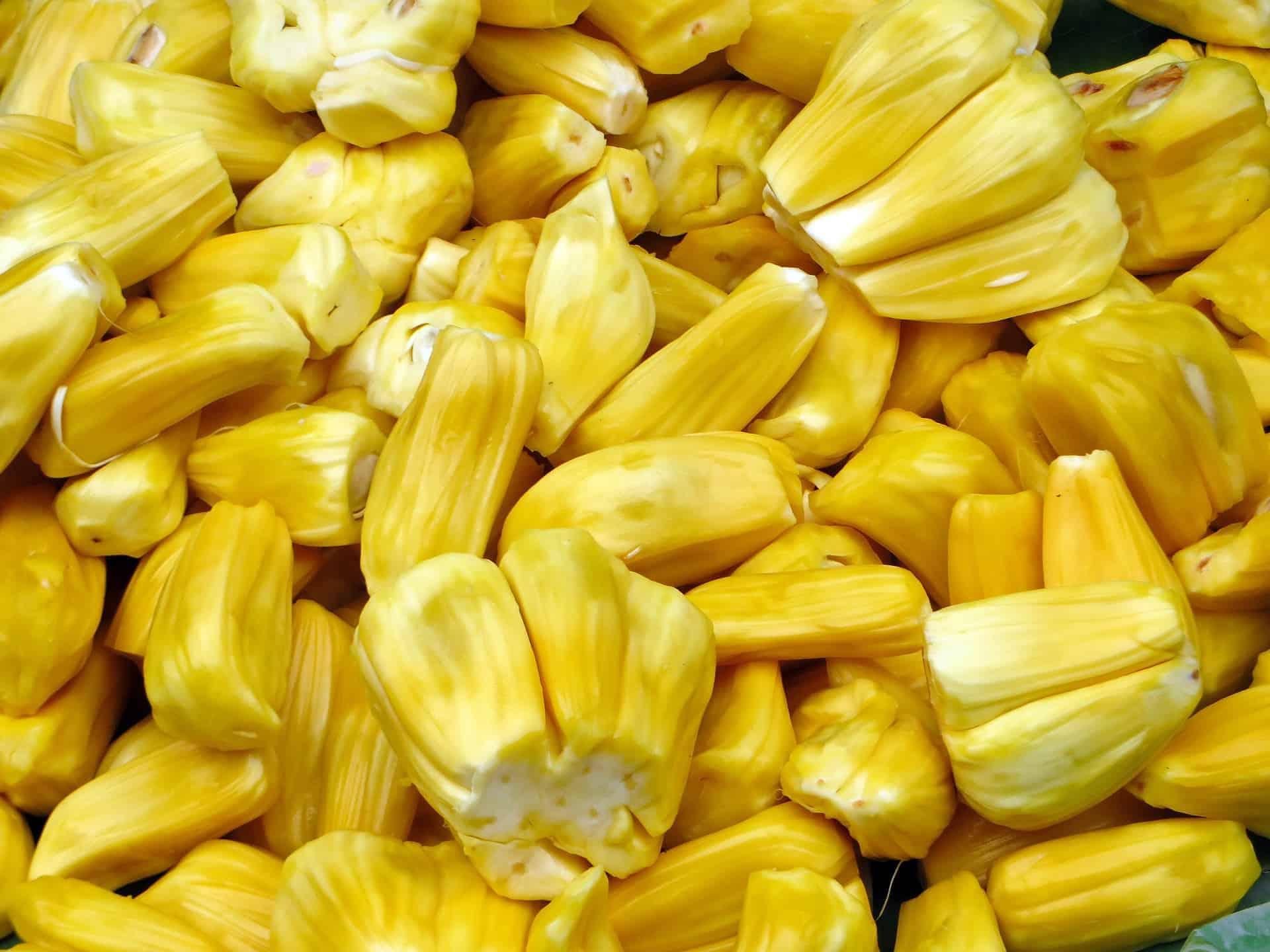 Yellow jackfruit