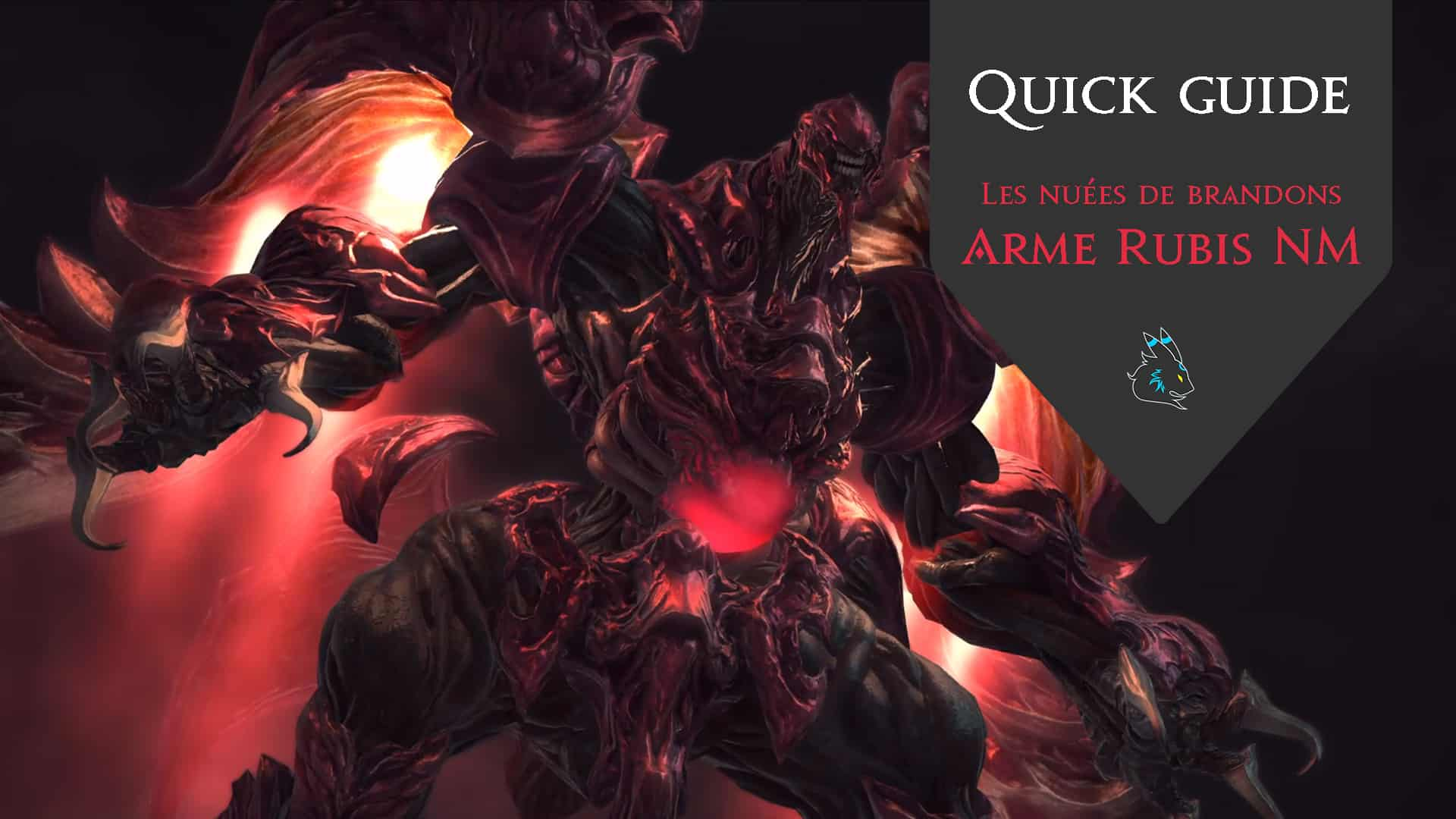 Illustration - Quick guide Arme rubis NM