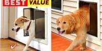 Best Pet Door for Dogs and Cats