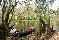 picnic along the ocklawaha Ocklawaha River: Kayak or canoe a river that was saved