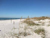 grayton beach scene Dr. Beach: Grayton Beach is tops in 2020