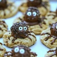 Spider Double Peanut Butter Truffle Cookies