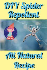 diy spider repellent
