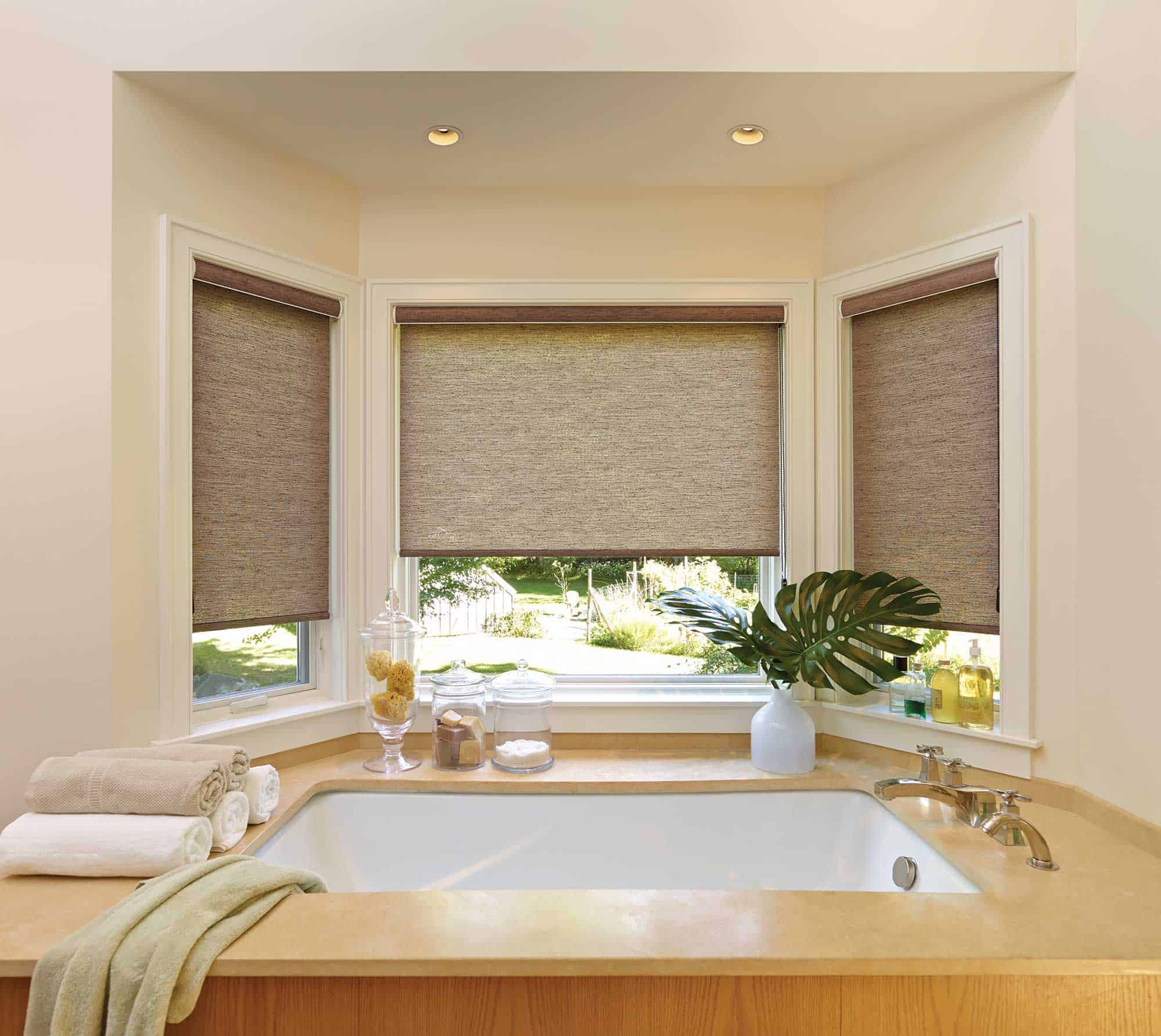 best roller shades in the Lexington