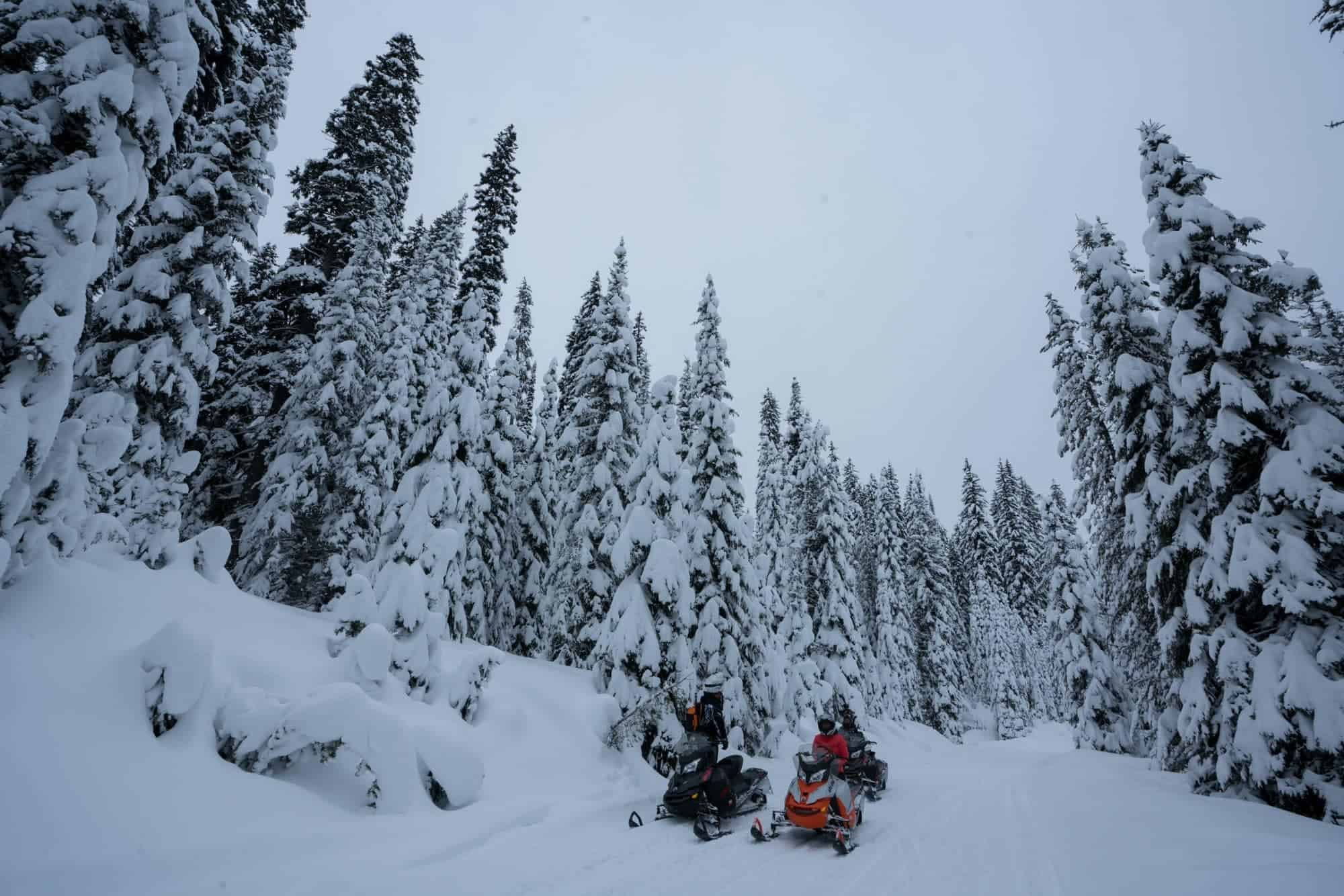 Snowmobiling to Burgdorf Hot Springs