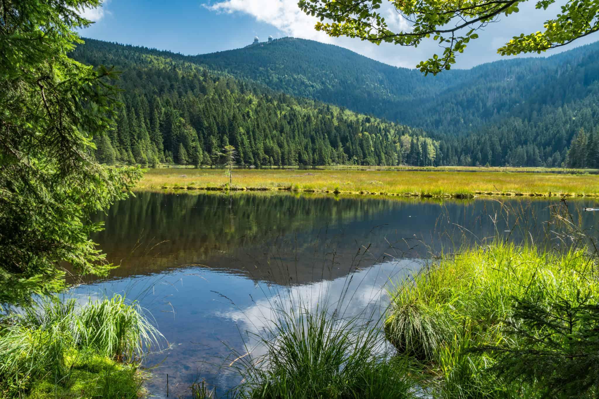 Kleiner Arbersee im Bayerischen Wald
