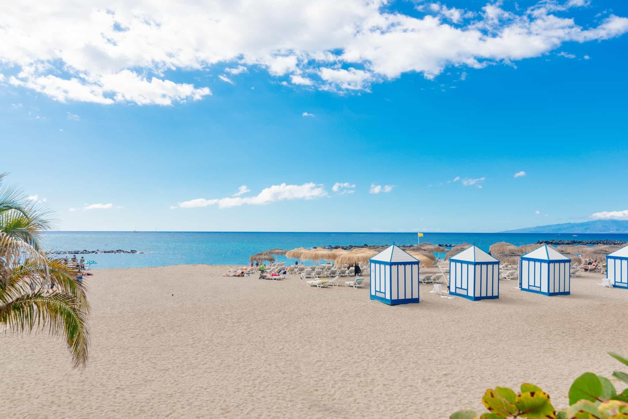 Playa El Duque beach with tropical palm trees in Costa Adeje