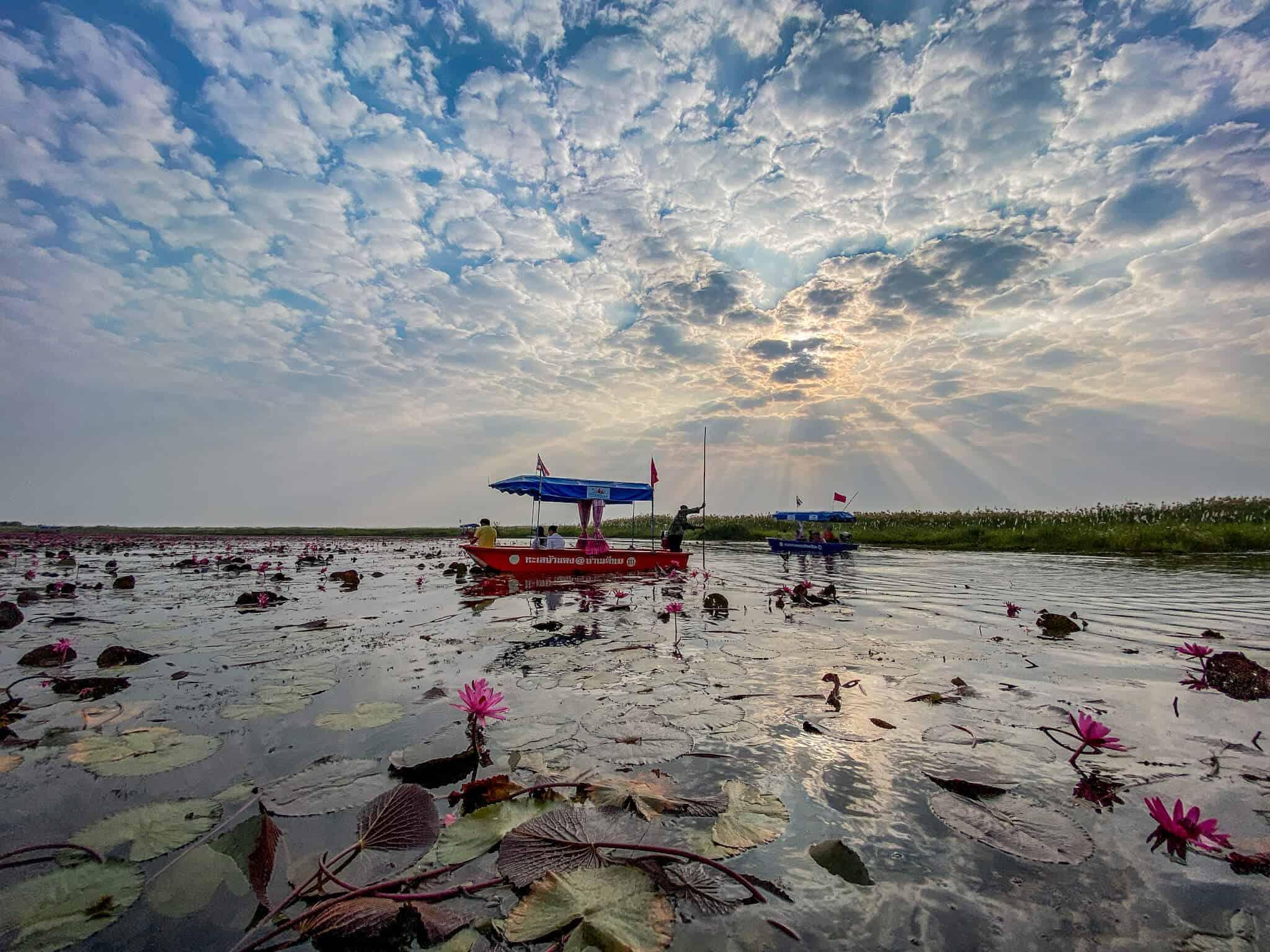 Red Lotus Lake 5