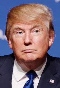 Donald_Trump_wiki