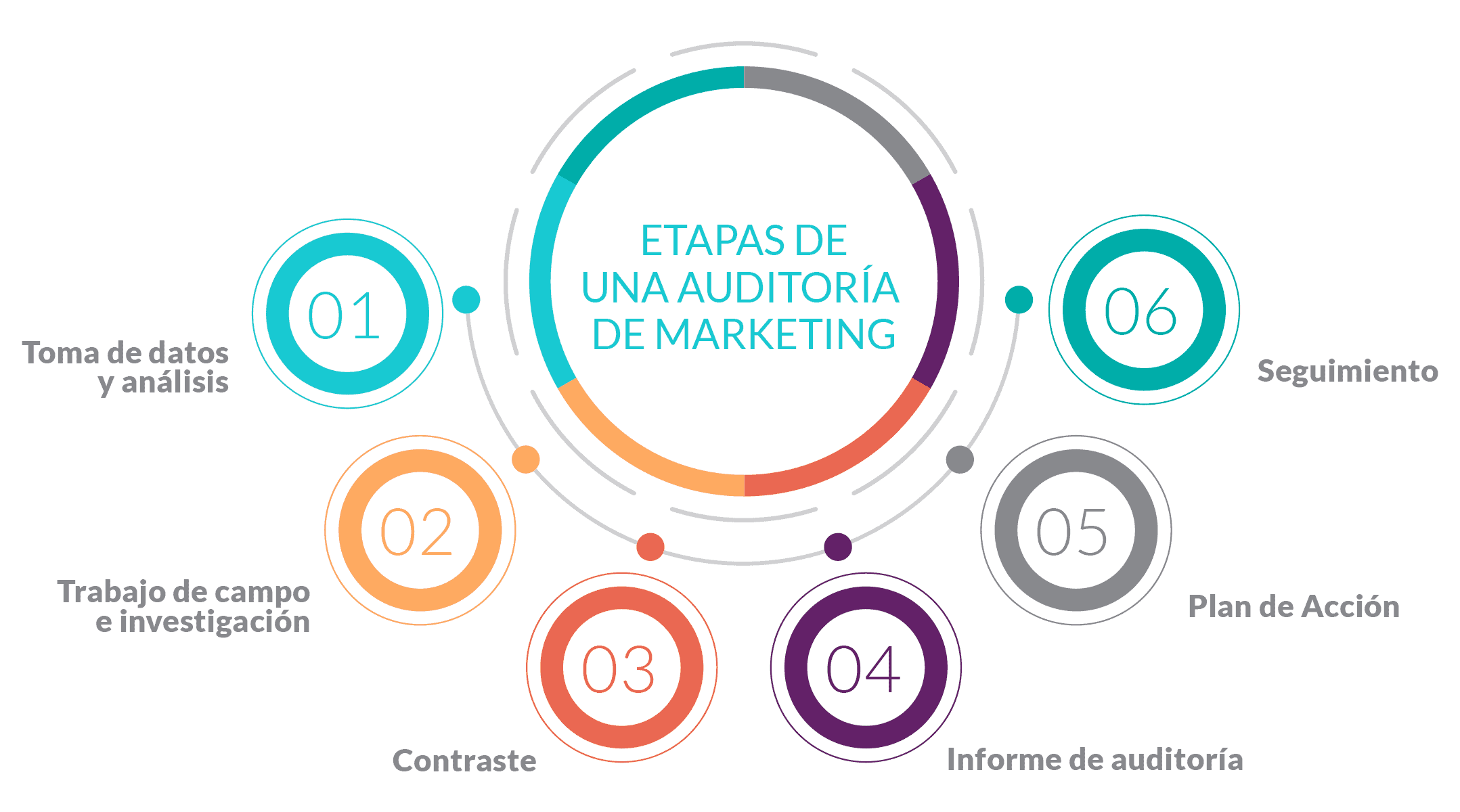 gráfica de las etapas de una auditoría de marketing en servicios de auditoria de marketing