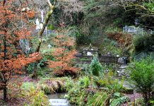 The beautiful serene setting of Tobernalt Holy Well - The Irish Place