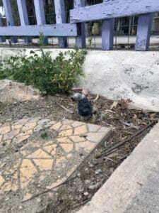 Trinkwasser Peloponnes