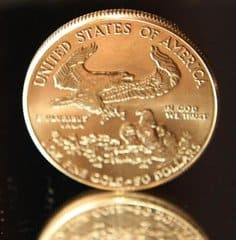American Gold Eagle (Foto: Goldreporter)