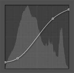 Edit with Adobe Lightroom Classic CC Tone Curve