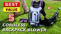 Best Cordless Backpack Leaf Blowers