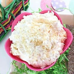 Get a taste of the tropics with this delicious Coconut Cream Dip that is perfect for graham crackers or fruit!