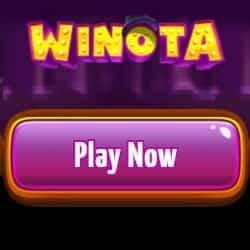 Winota Casino play now button