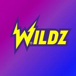 Wildz Casino banner 250x250 (2)
