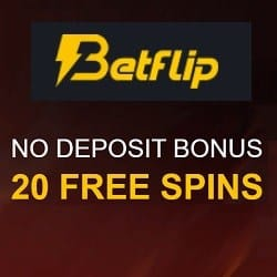 Play 20 free spins no deposit required!