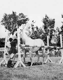 The photo of Snowman jumping another horse that inspired Author Elizabeth Letts.