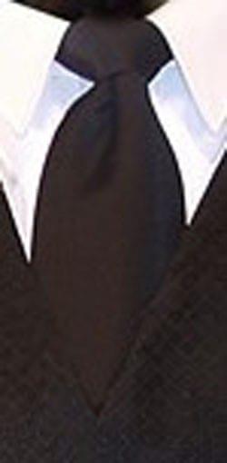 Necktie TURQUOISE GEO Solid Pre Tied Long Tie
