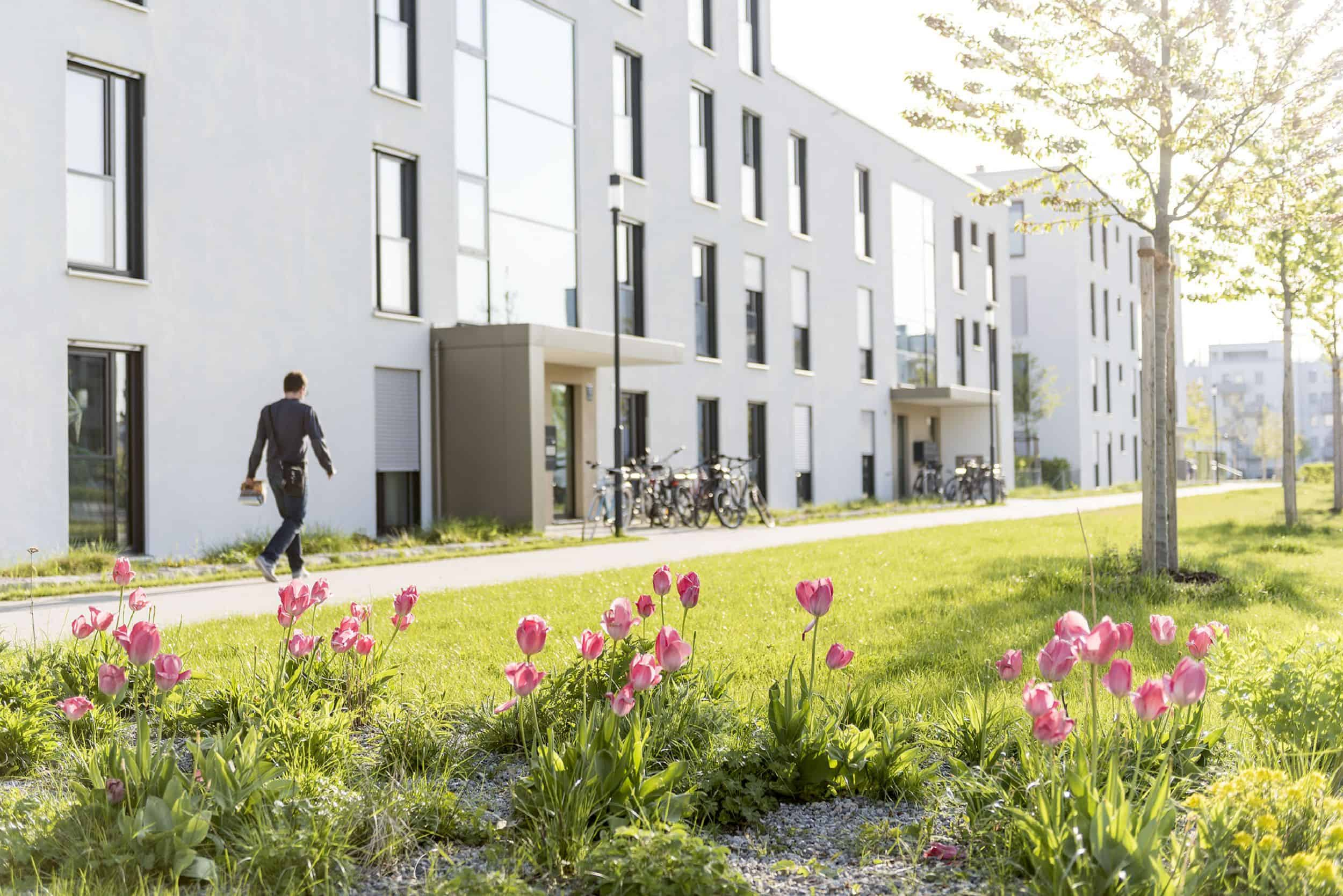 Bild: Blick über eine Tulpenpflanzung im öffentlichen Grün an der Hochäckerstraße, Foto: Johann Hinrichs Photography