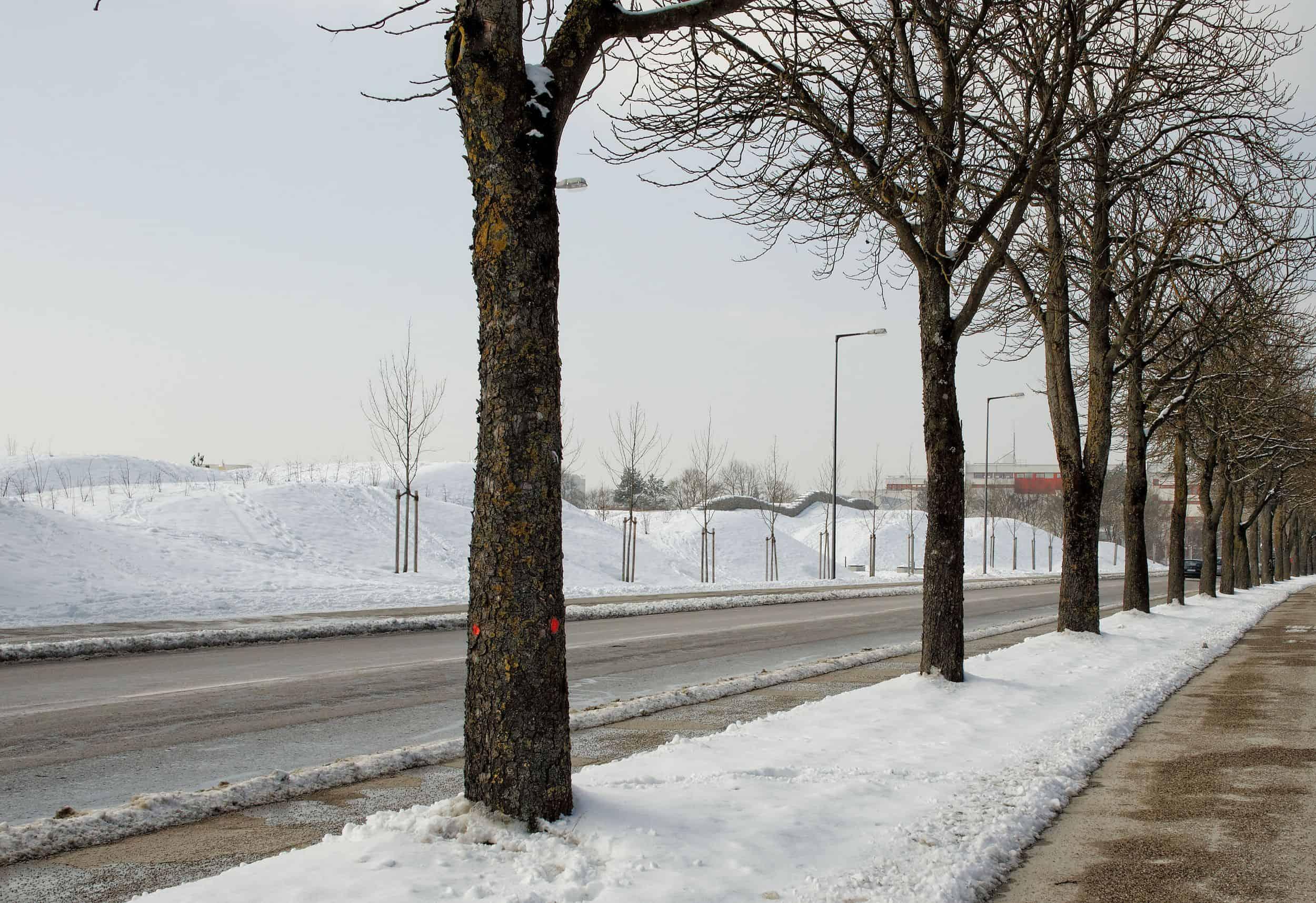 Bild: verschneite Wellenschnitten, Foto: ver.de landschaftsarchitektur