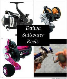 Best Daiwa Saltwater Fishing Reels