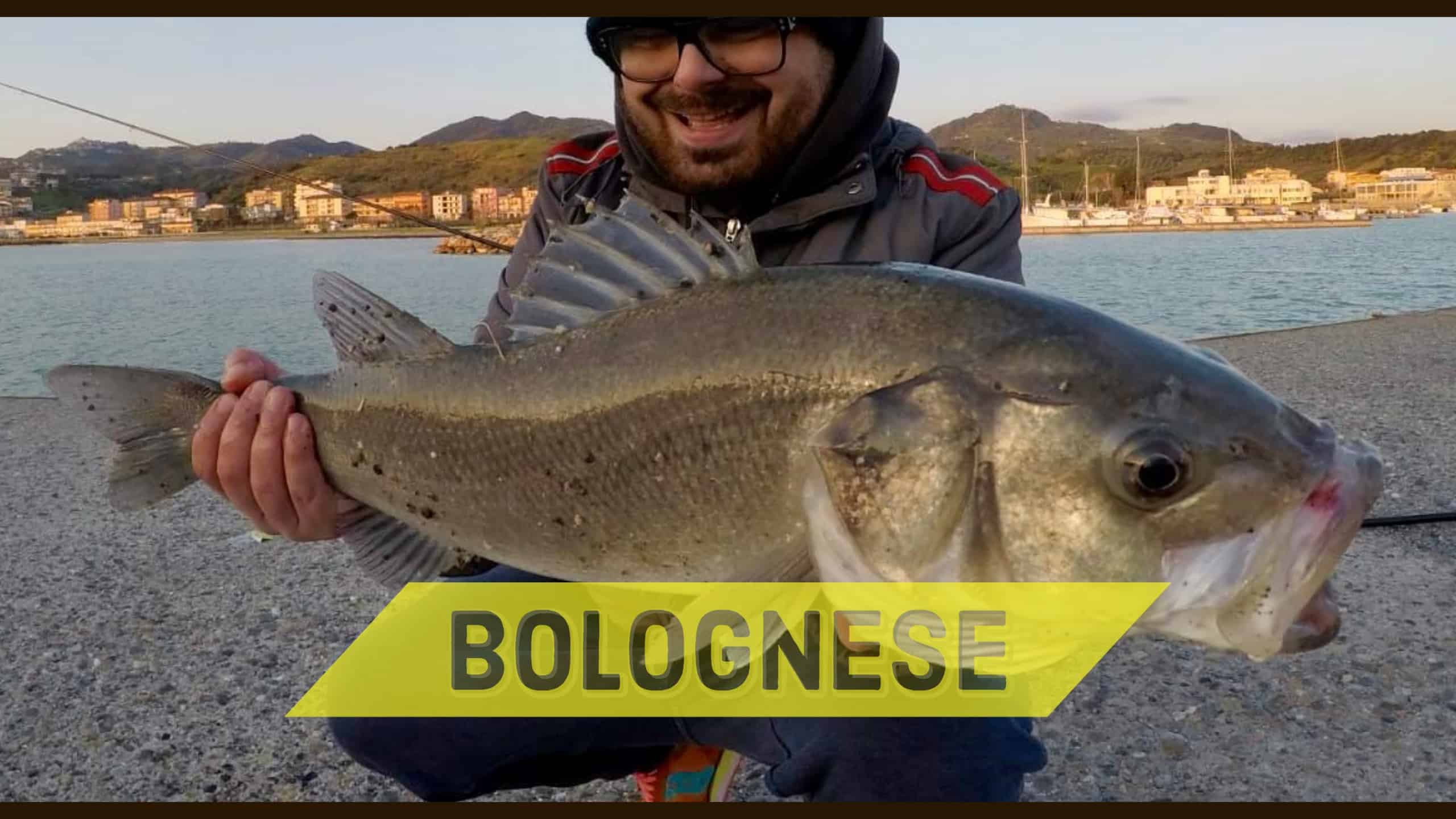 spigola a bolognese