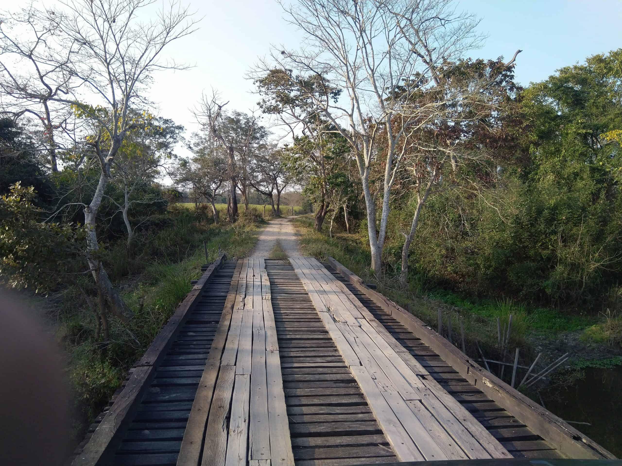 best time to visit kaziranga national park