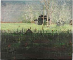 Peter Doig, landscape artists