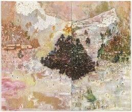 Peter Doig - Ski Jacket