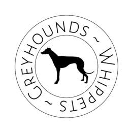 Greyhounds & Whippets