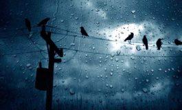 Սպասվում է անձրև և ամպրոպ. եղանակը Հայաստանում և Արցախում