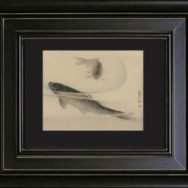 antique_koi_black_mat-no-white-border-web