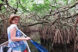 The Turner River's mangrove tunnels are beautiful -- so full of bromeliads. (Photo: Bonnie Gross)
