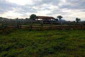 vende-se fazenda de 500 ht na região de aquidauana