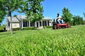 lawn-care-pricing-example-1