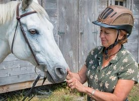Horses Read Human Facial Expressions: Researchers