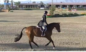The United States Equestrian Federation (USEF) grants a rehearing petition filed by two hunter/jumper trainers from Lane Change Farm. Kelley Farmer and Larry Glefke claim they were not properly notified regarding a GABA violation and hearing.