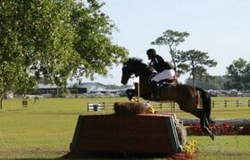 Conahy's Courage Euthanized at Red Hills International Horse Trials