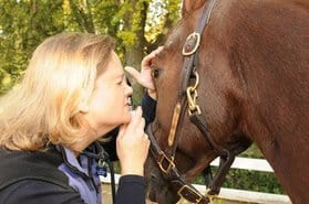 8 Pre-Purchase Exam Tips Before Buying a Horse