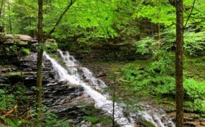 Ricketts Glen State Park Waterfall cover