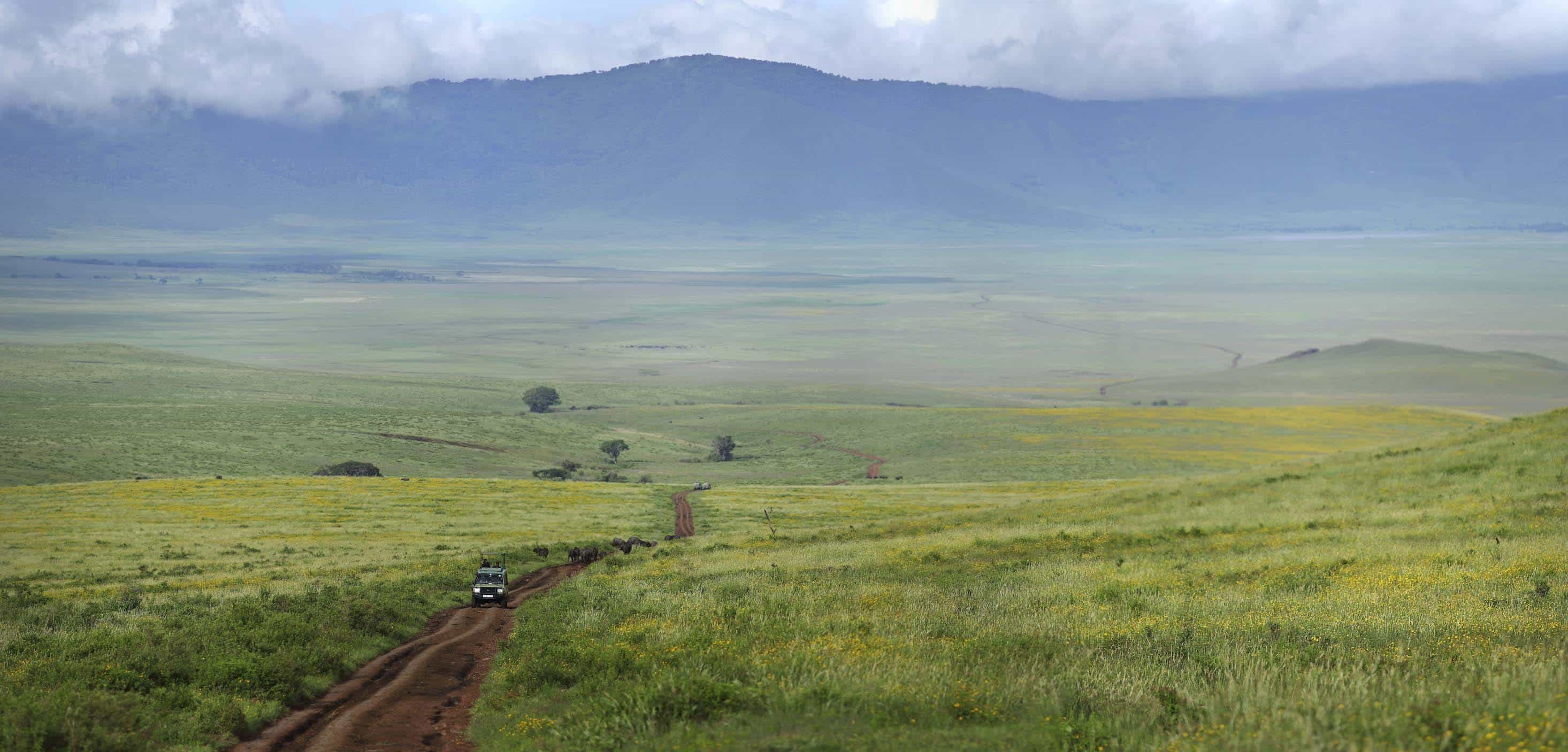 The Highlands Ngorongoro Crater
