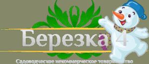 Садоводческое некоммерческое товарищество Березка 4 Новый год 2018